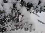Sneeuwstappen