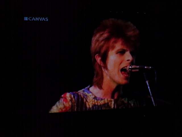 Bowie_220720102