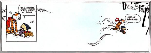 Strook van de allerlaatste aflevering 'Calvin and Hobbes'.